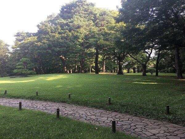 iPhoneで公園を撮影
